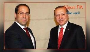 الشاهد-يدعو-خلال-لقائه-أردوغان-إلى-فتح-آفاق-للصادرات-التونسية-في-الأسواق-التركية