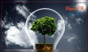 برامج تحفيزيّة للباحثين عن شغل لإنشاء مؤسسات صغرى في مجال الخدمات البيئية.