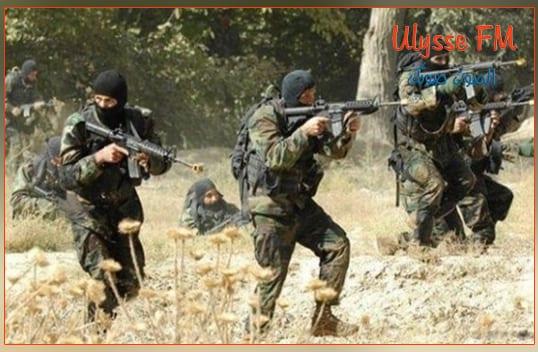 تبادل لاطلاق النار بين الوحدات الامنية والعسكرية ومجموعة ارهابية بمرتفعات ولاية الكاف