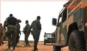 تطاوين : الجيش الوطني يحجز 256 سلاح ناري بالحدود التونسية الليبية