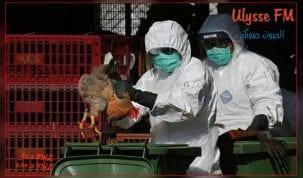 """بعد كورونا.. ظهور """"فيروس وبائي"""" جديد في الصين"""